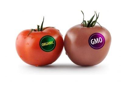 Обнародован чёрный список. Производители ГМО