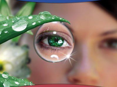 Естественный способ видеть. Глаза и зрение