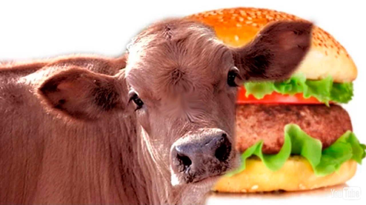 Гамбургер без прикрас