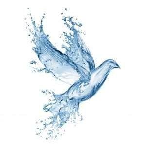 Наше тело просит воды