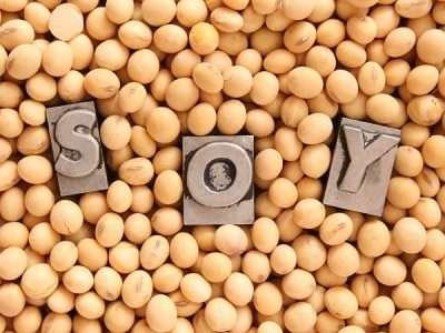 И снова о сое. Учёные против соевой промышленности