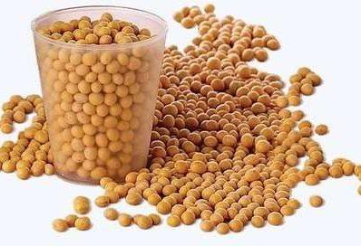 Миф № 10: Соевые продукты являются надёжными заменителями мясных и молочных продуктов.