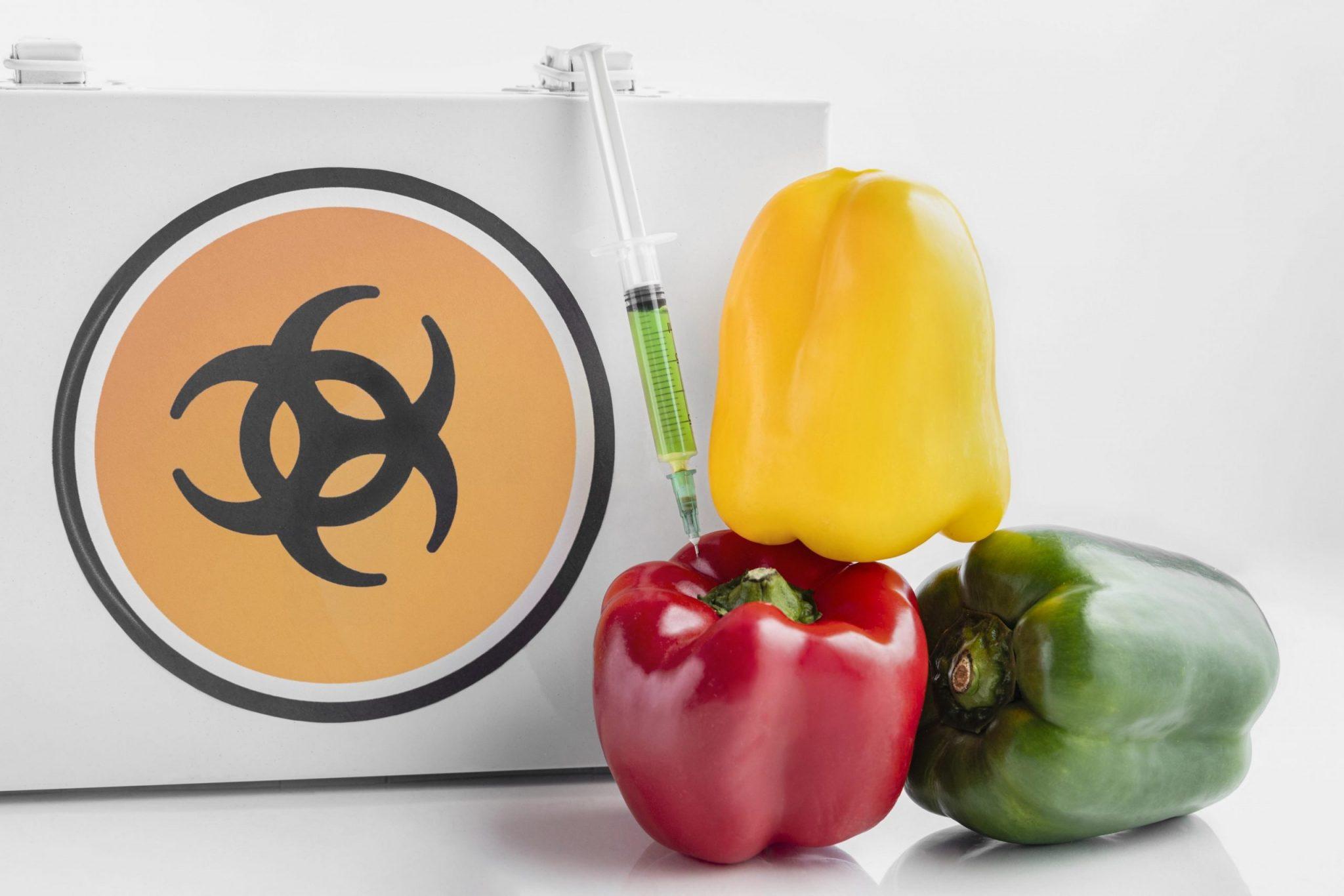 Опасность Генетически Модифицированных Продуктов Питания (Гмо)
