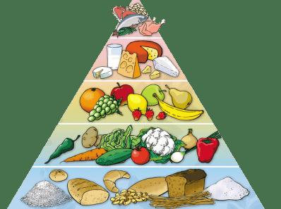 Что не так с политкорректным (рекомендованным) питанием? Пирамида питания