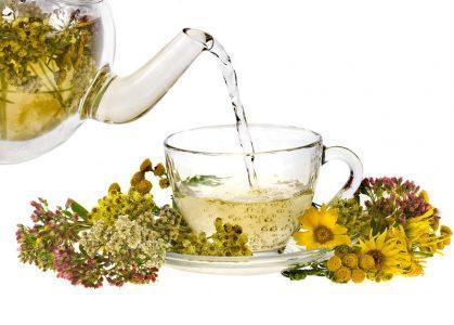 Приготовление травяных чаев