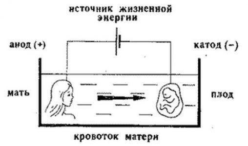 Гальванопластика в беременности