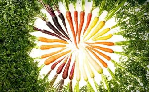 Правильное питание и долгая полноценная жизнь