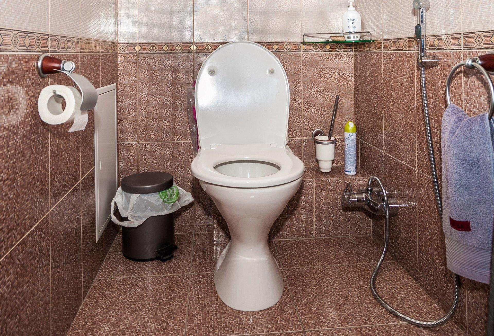 То, что Вы видите в туалете, может дать вам ценную информацию о Вашем здоровье