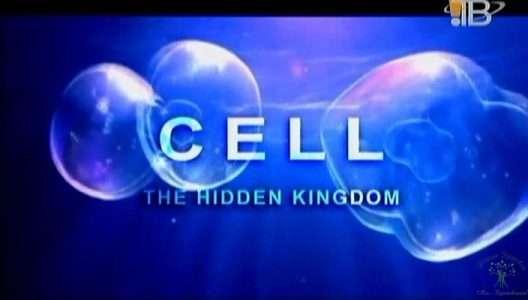 Клетка. Скрытое королевство