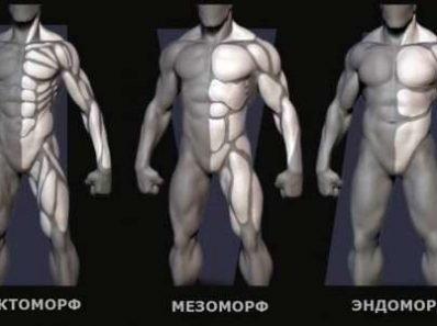 Программы тренировок для каждого типа телосложения