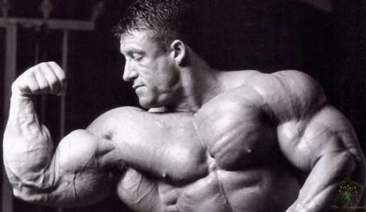 Базовые упражнения для каждой мышечной группы