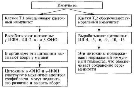Схема 8.2. Характеристика особенностей иммунитета при невынашивании беременности