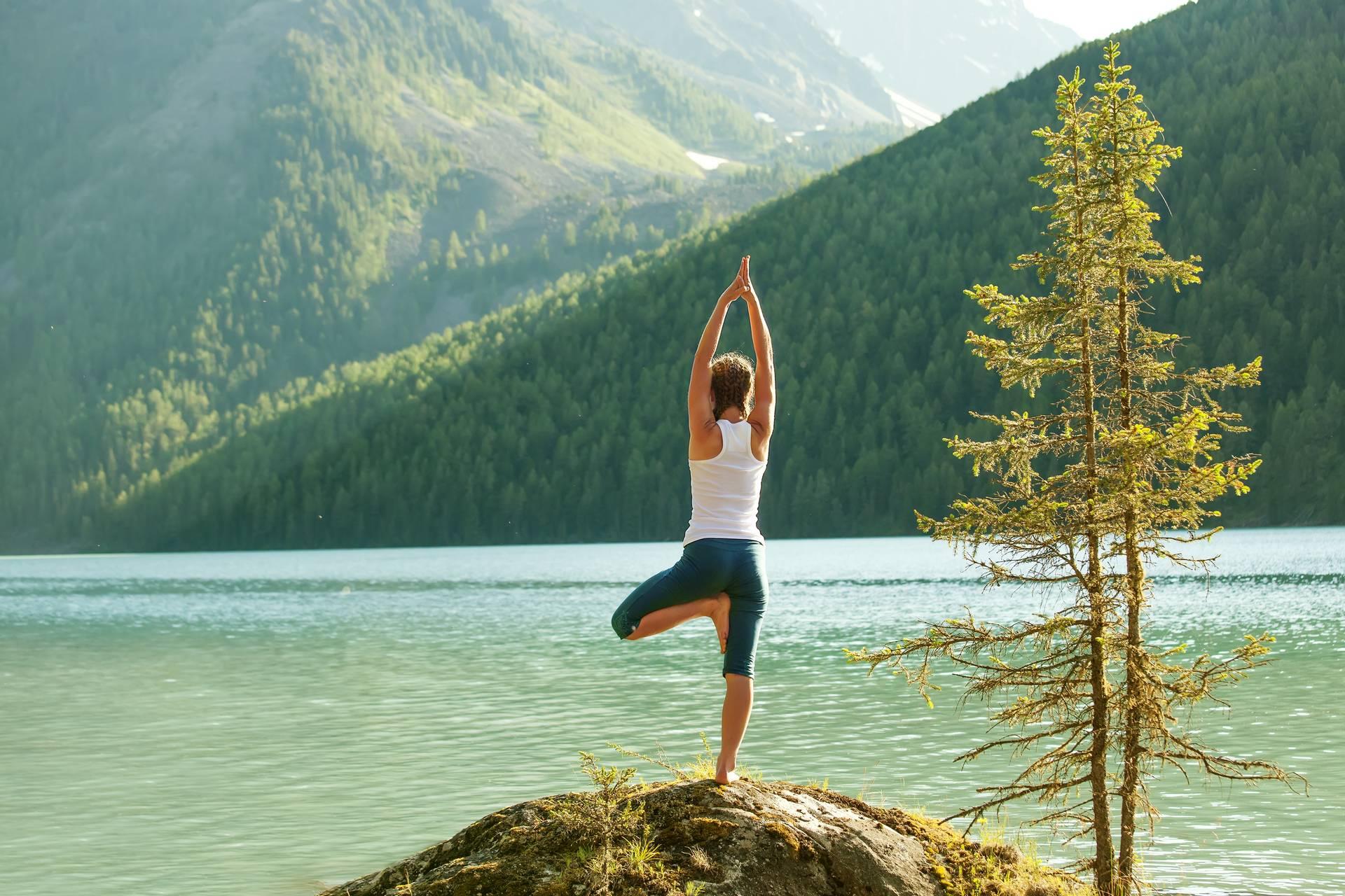 Происхождение йоги
