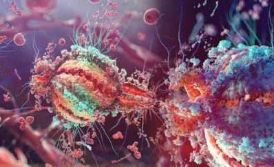 Почему непобедимы вирусы?