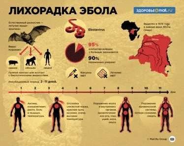 Кто Причастен К Вспышке Лихорадки Эбола?