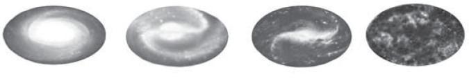 Эволюция галактик (о сходстве микро- и макропроцессов)