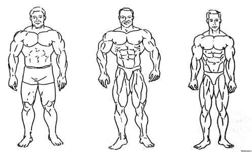 3 простых шага, которые помогли женщине сменить размер 48 на размер 40 всего лишь через 14 недель