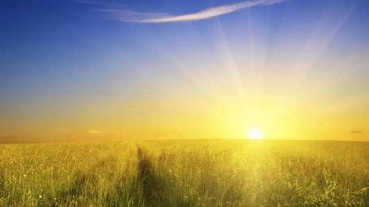 Воздействие Солнечного Света На Экзему (Атопический Дерматит)