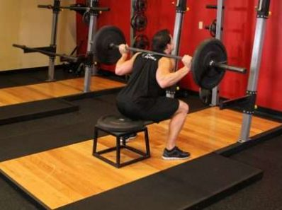 Приседания на скамью не снижают эффективность тренировки пауэрлифтеров