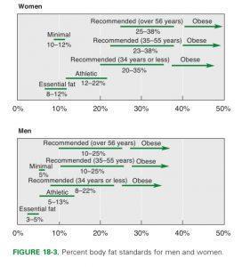 Стандарты процента жира для мужчин и женщин