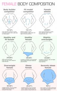 Процент жира у мужчин и женщин