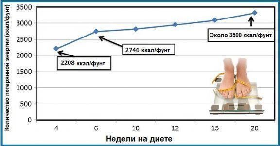 Рисунок 1. Количество потерь энергии в расчёте на фунт потерянного веса.