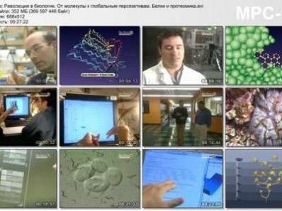 Революция в биологии. От молекулы к глобальным перспективам