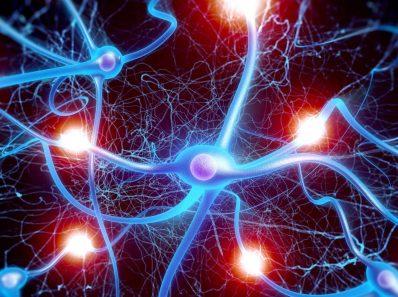 Уникальные возможности мозга