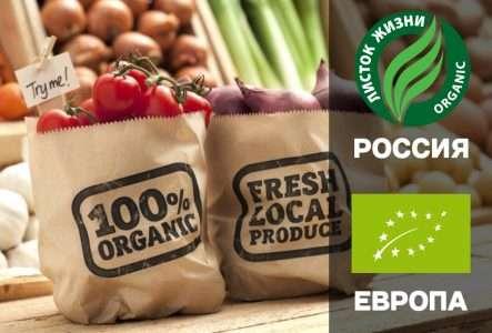 Насколько полезны органические продукты питания?