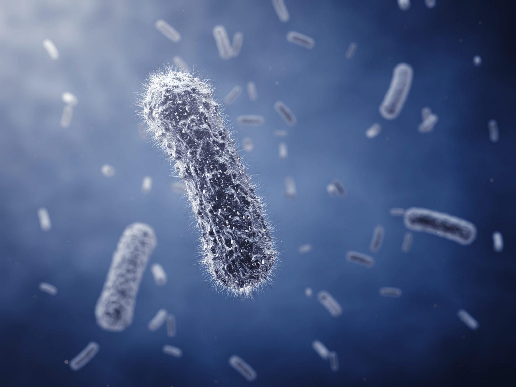 Как быстро укрепить иммунитет?