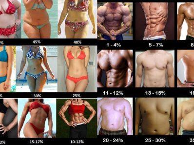 Что нужно знать о проценте жира в организме человека?