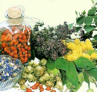 Часть 2. Витамины и травы
