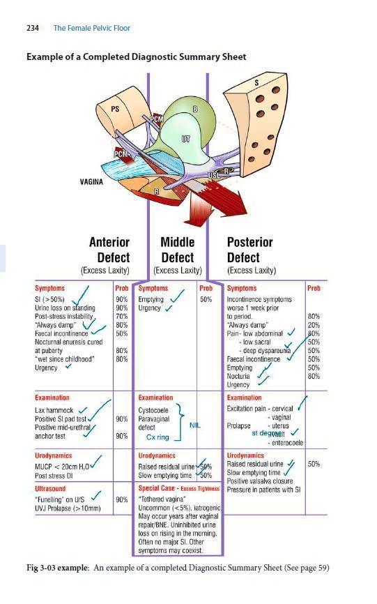 Женский тазовый пол: функция, дисфункция и управление. В соответствии с интегральной теорией