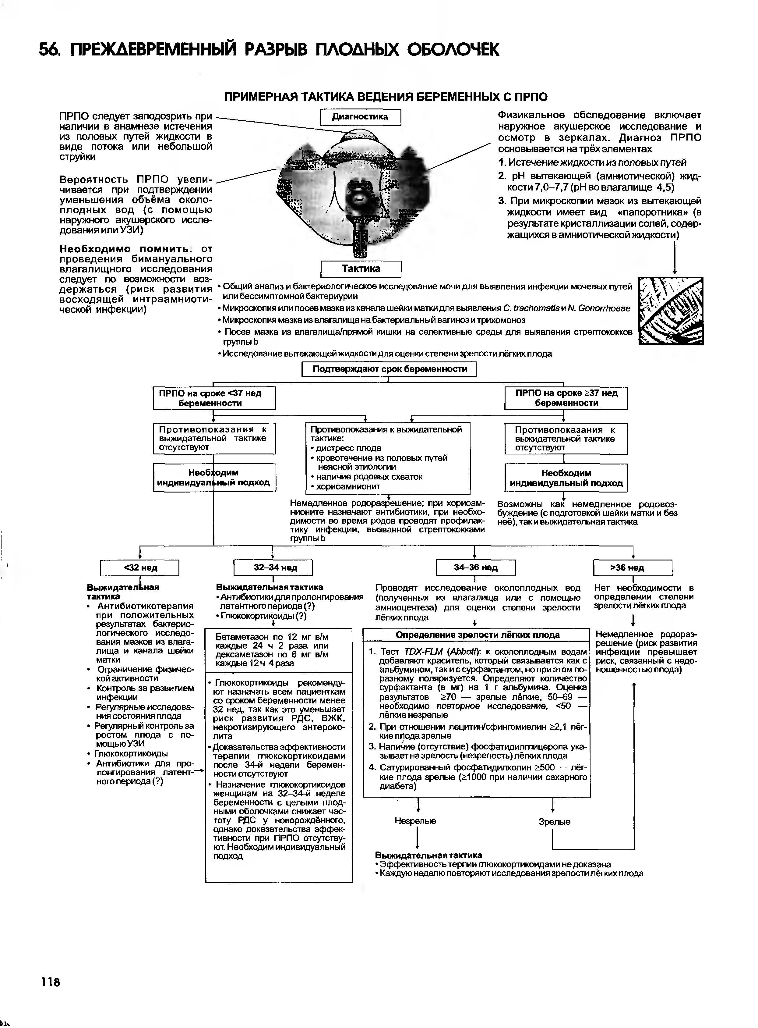 Наглядные акушерство и гинекология. Эролл Р. Норвиц, Джон О. Шордж