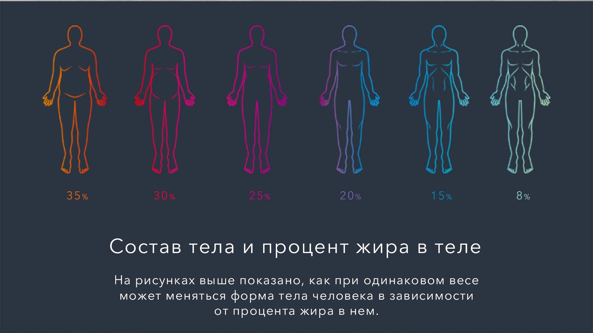 Состав тела. Как определить соотношение жира к мышечной массе?