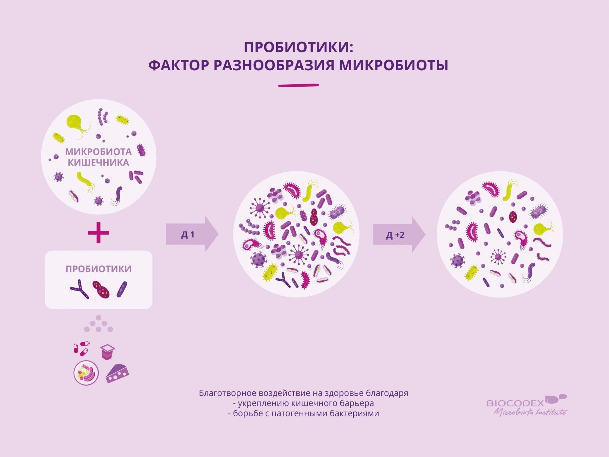 Пробиотики. Чудо пробиотиков