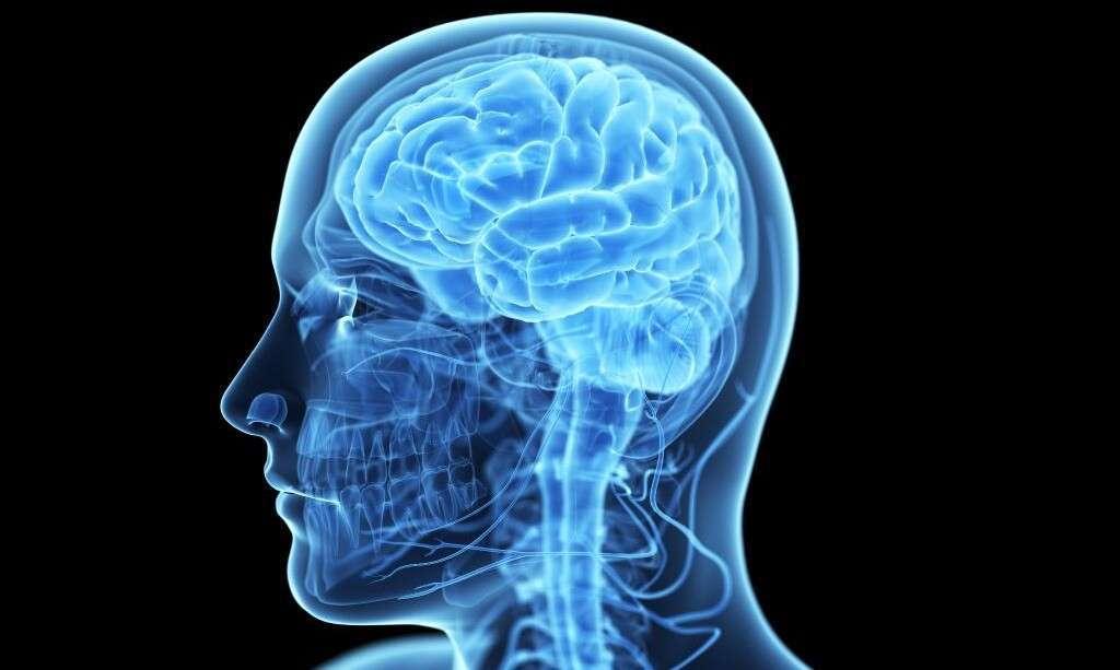5 главных и полезных привычек для здоровья вашего мозга