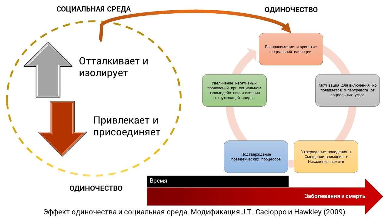Эффект одиночества и социальная среда. Модификация J.T. Cacioppo и Hawkley (2009)