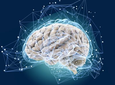 Как Мозг Реагирует На Наши Неудачи