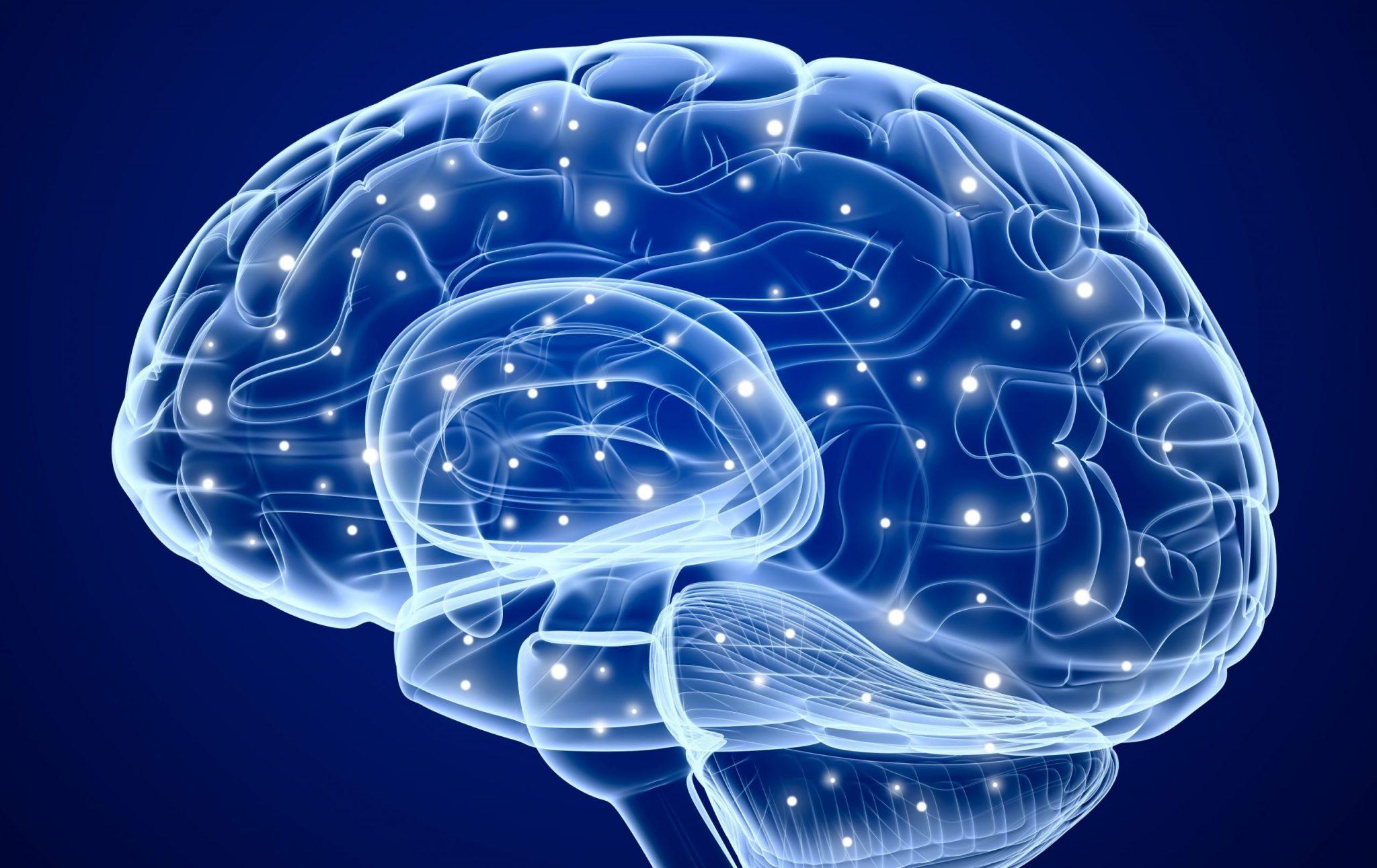 Как научить мозг мыслить в позитивном ключе