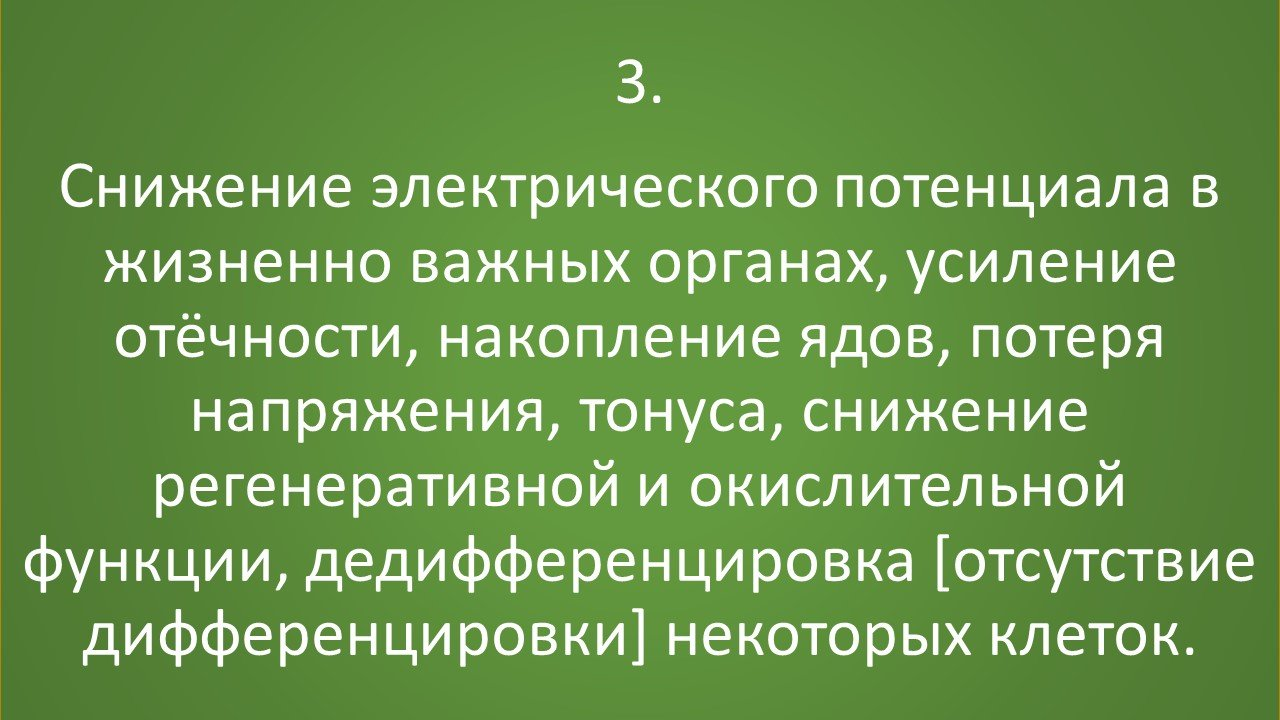 slajd3