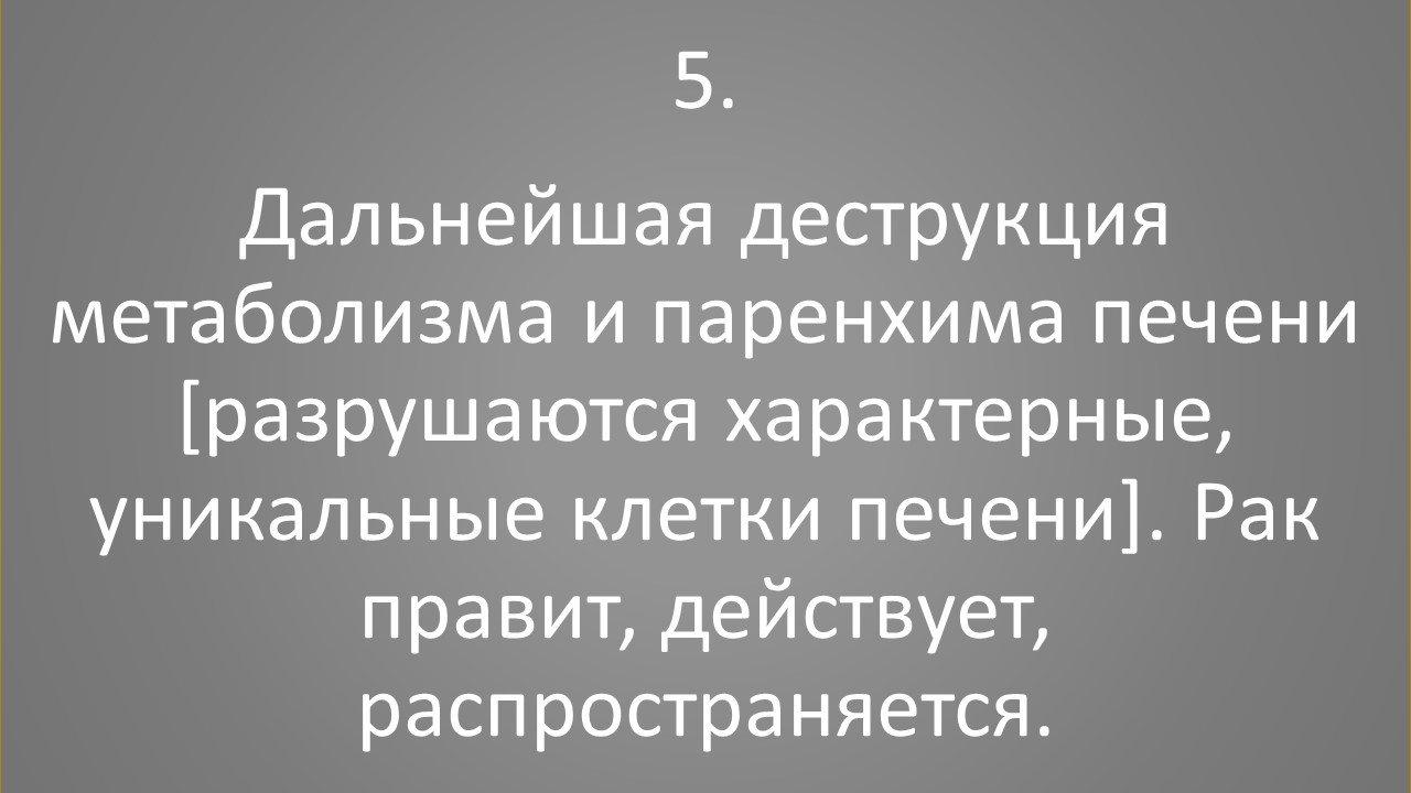 slajd5