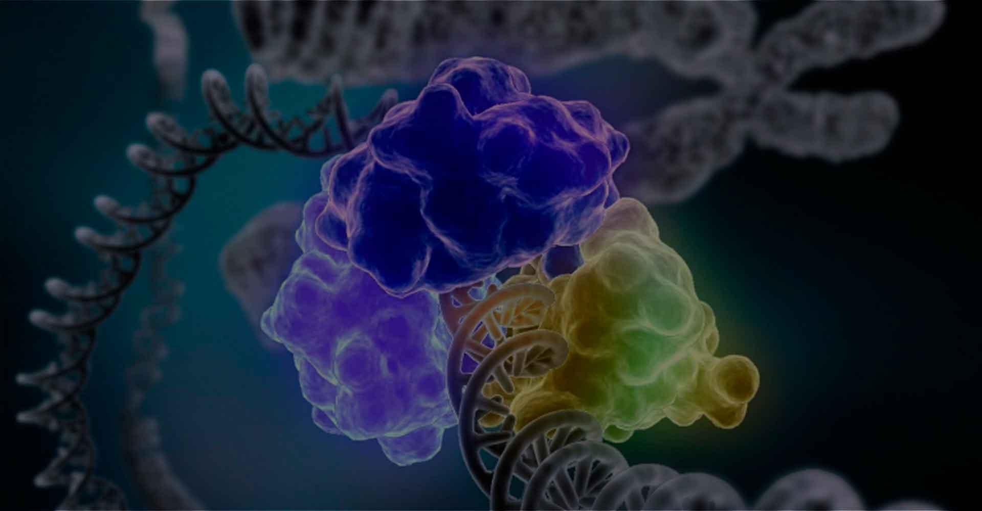 Ферменты - токсикоз и делегированная элиминация