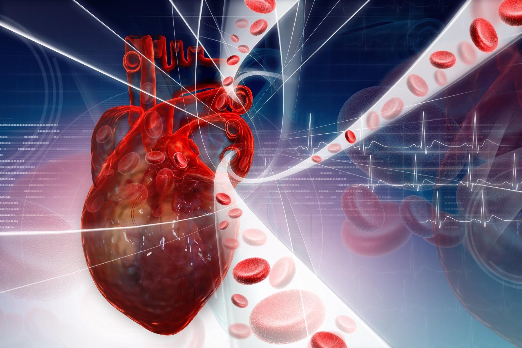 Каждую третью смерть от сердечно-сосудистых заболеваний можно предотвратить