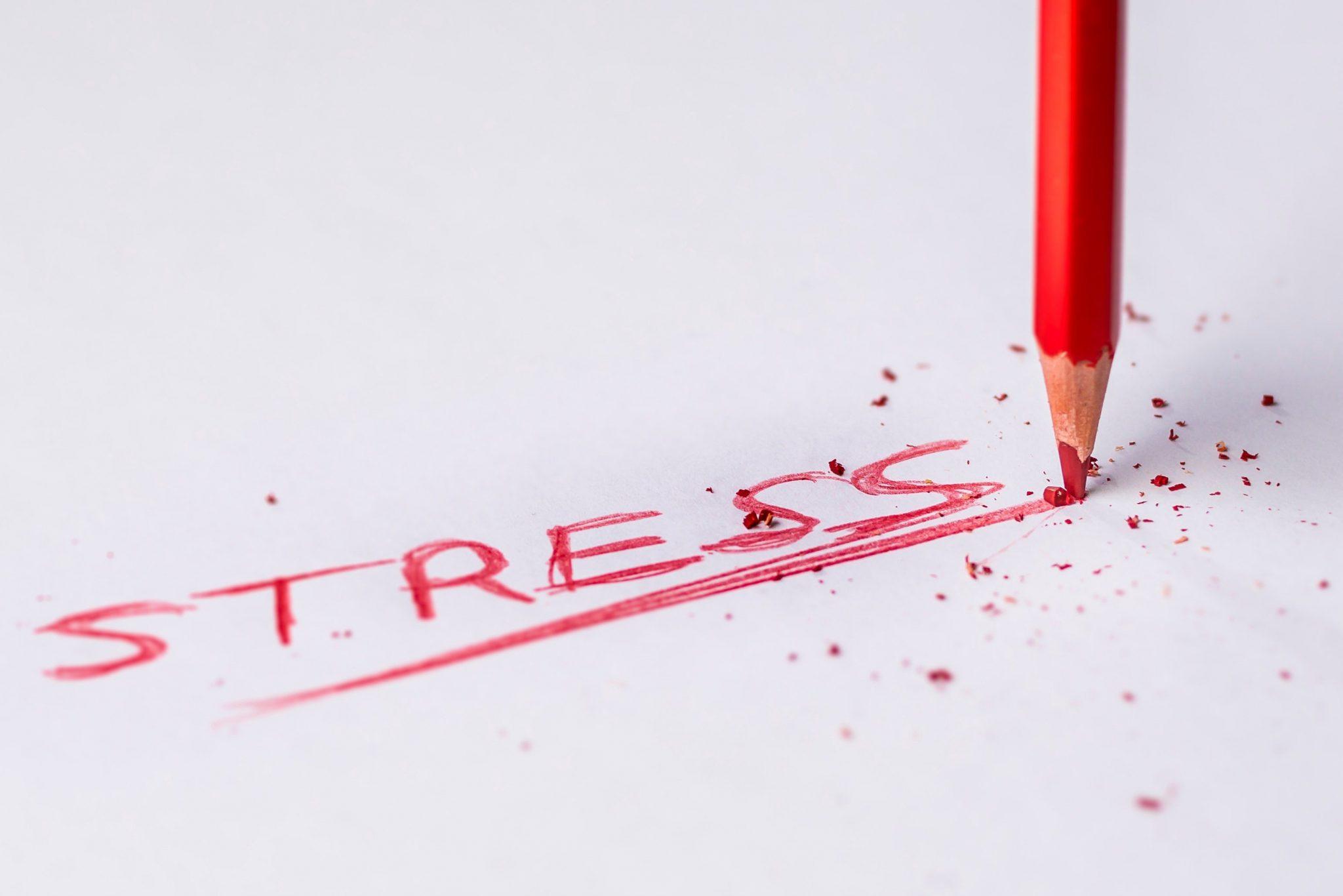Как стресс влияет на ваше тело, и простые методы снижения стресса и развития большей устойчивости