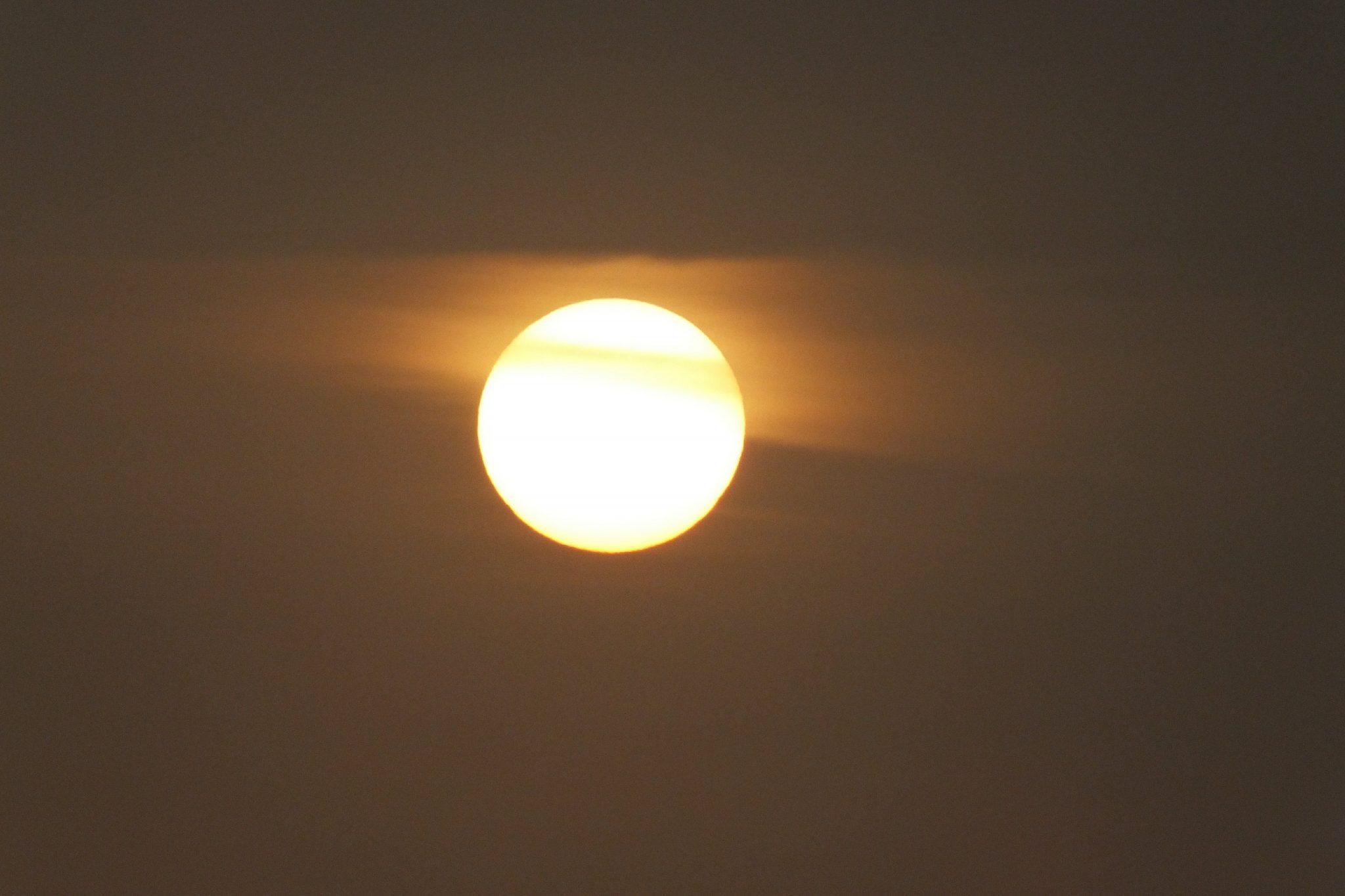 Как воздействие солнца улучшает вашу иммунную функцию