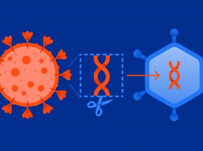 Консультанты по здравоохранению переименовали «побочные реакции» от вакцину от COVID-19