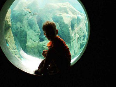Аутизм у детей. 2 фактора, повышающие риск развития аутизма